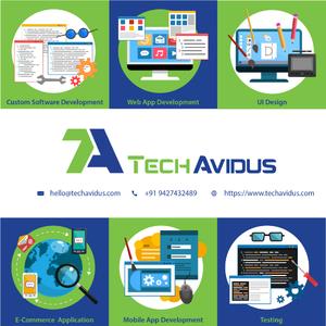 TechAvidus, Infocity