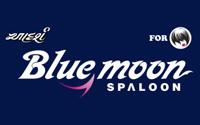 Bluemoon-Spaloon, Vastrapur